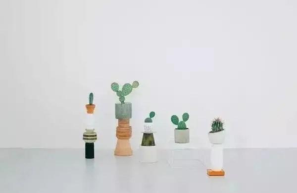 把綠植養成藝術的姿態