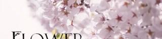 お花をモチーフとしてつくられたかわいらしいFlower Font