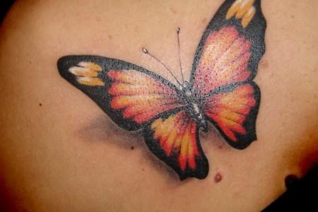3d erfly tattoo design