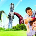 offre comité d'entreprise, parc d'attraction, offre CE parc d'attraction Walligator-magazine Influence!ce-3