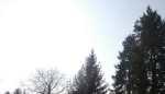 die Sonnenlichtlampe ersetzt das Tageslicht