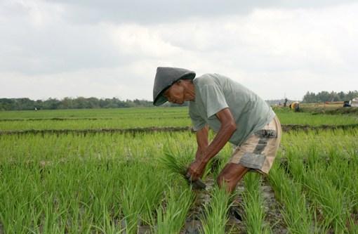 Kredit Pertanian Melesat, Pertambangan Anjlok
