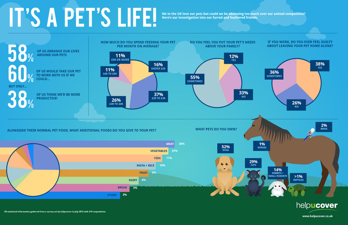 Pets Infographic