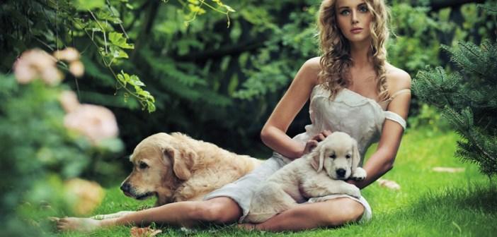 Jak se starat o psa