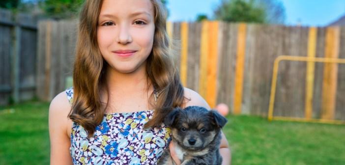 Péče o psa od štěněte až po dospělost