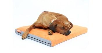 Aminela - matrace pro psy