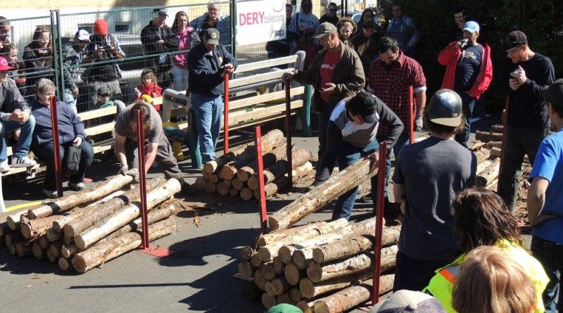 Une relance réussie pour le Festival forestier