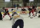 Tournoi de hockey adulte : la compétition débute samedi
