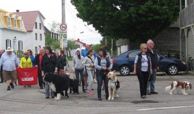 marche_chiens2016