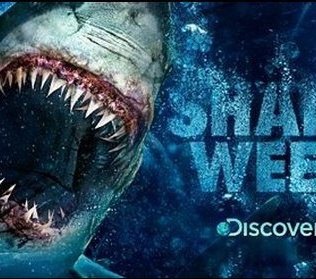 shark-week-discovery-channel