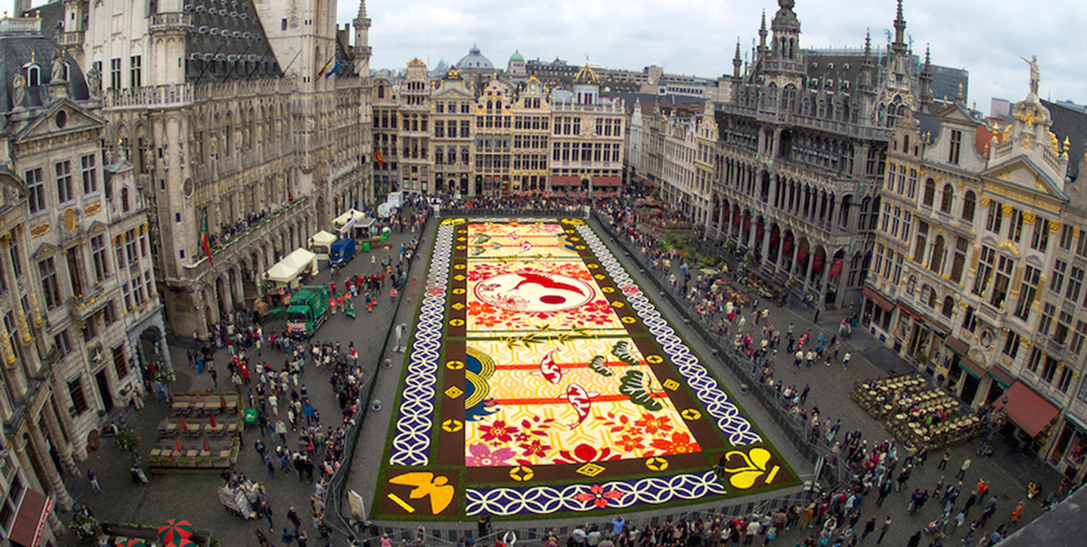 Belgium   Inhabitat   Green Design  Innovation  Architecture  Green     This gigantic flower carpet in Brussels is made of 600 000 blooms