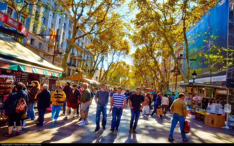Urban Gardens Provide Ecosystem Services to Barcelona