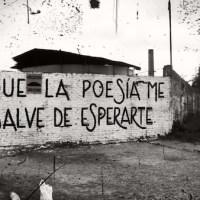 Acción poética Tucumán