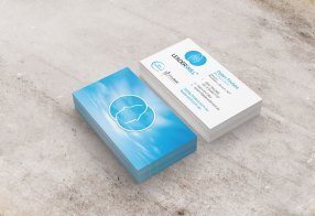 Leaderskill Business Cards