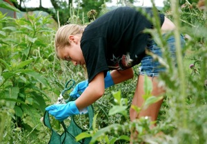teen volunteering at Thistle Farms
