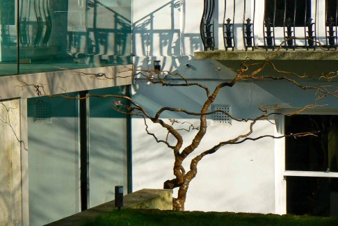 steel_tree-13