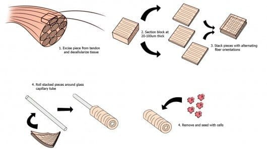 stacked-collagen