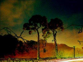 photoblog-20041125