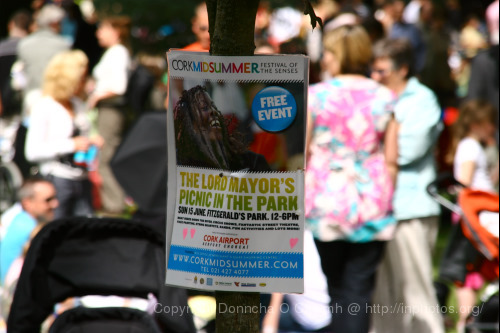 lord-mayors-picnic-cork_31