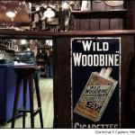 wild woodbi