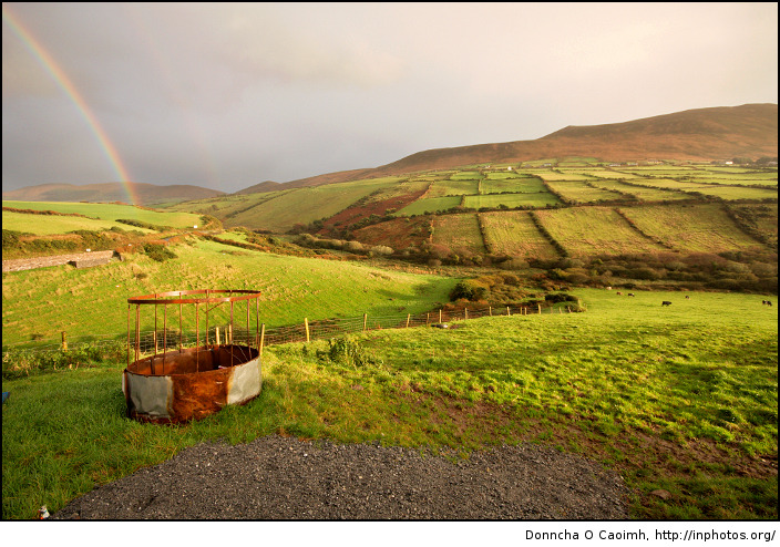 A pot of gold in the fields of Kerry