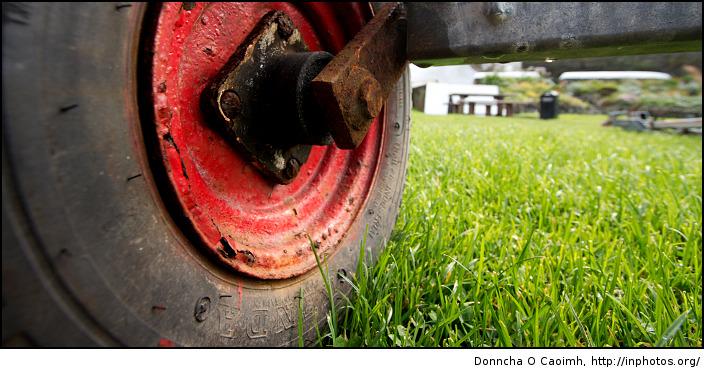 It's wheely grass