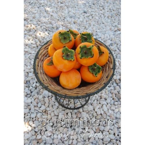 Medium Crop Of Just Fruits And Exotics