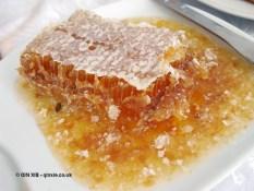 Honeycomb in Georgia