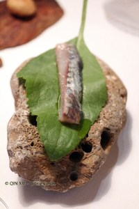 Rompepiedra leaf with mackerel, El Poblet, Valencia