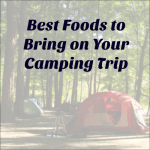 The Best Foods to Bring on Your Camping Trip!