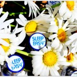 Melatonin, 5-HTP, and GABA to fall asleep. Dream Water SleepStat Natural Blend, Dream Water, Natural Sleep Aid, Canada natural sleep aid, I cannot sleep, What to use to fall asleep, Dream Water in Canada, Where to buy Dream Water in Canada,