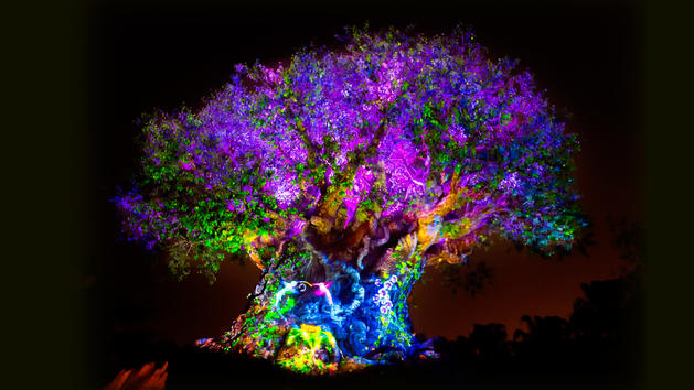 (David Roark, photographer) Experiencing Disney, Disney for Canadians, Disney Tree of Life