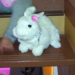 This rabbit was hidden in the room with a message around his neck thanking the kids for finding him and telling them that he was theirs to take home!
