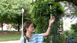 Miller South students breathe life into wind chime project for Garden of Hope and Healing