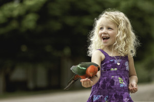 little girl with parrot at Pigeon Forge attraction for toddlers