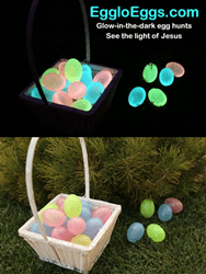 Egglo Eggs