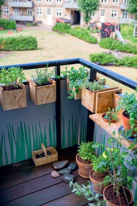 Un balc n de plantas aromaticas - Cultivar plantas aromaticas en casa ...