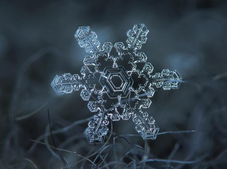 macro snow flake011