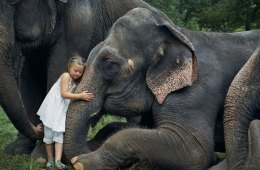 amelia-and-the-animals-exotic-photography-robin-schwartz-13