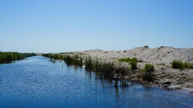 Discover Danube Delta