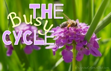 The Busy Cycle