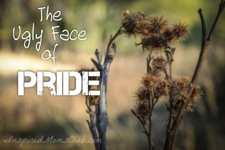 The Ugly Face of Pride