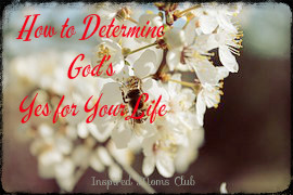 How to Determine God's Yes for your Life