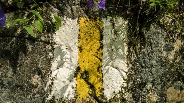 White and yellow trail marking