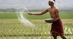 small farmer in india