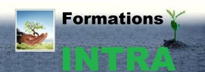 Institut-Management - Formations INTRA -