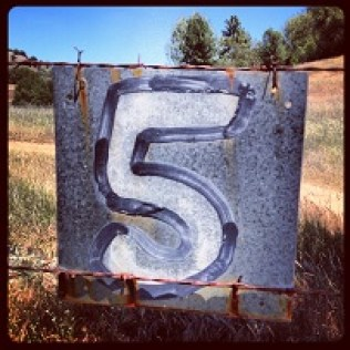 Mile marker? South Fork American River Trail