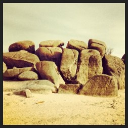 Exposed granite boulders on the peninsula of Folsom Recreation area.