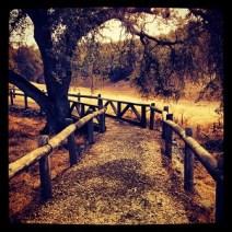 Nature trail at Peninsula Campground