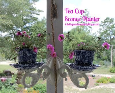 Tea-Cup-Sconce-Planter.intelligentdomestications.com